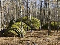 "Geological Reserve ""Kamennoye Selo"""