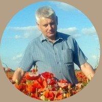 Микола Губницький